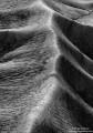 Backbone print