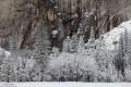 Leidig Meadow - Fresh Snow print