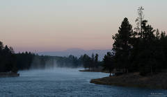 Madison river, Wyoming, Yellowstone, National, Park, morning