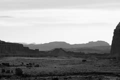 Desert Quiet