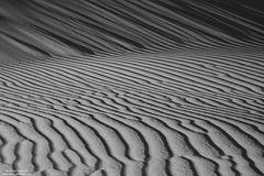 Dune Up Close