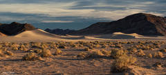 death valley, national, park, dune, fading