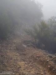 foggy, trail, santa barbara, mountains, ca