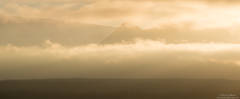Foggy Wrangell Mountains Morning