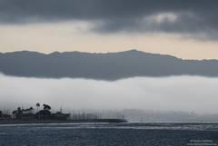 Santa Barbara Harbor in the Fog