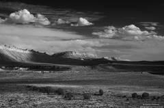 High Desert Drifters