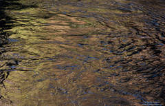 merced, river, yosemite, national, park water, reflection