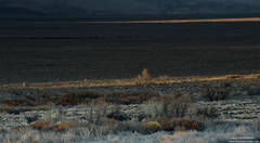 sierra, owens, valley, sunset, dusk