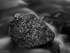 rock, creek, lichen, boulder