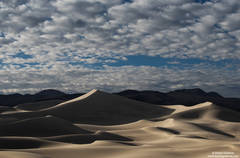 Long Dune Shadows