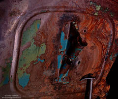 rust, eastern, sierra