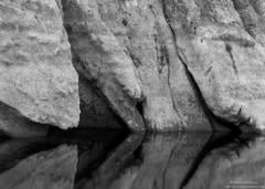 Santa Ynez River Reflections