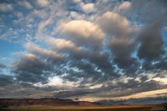 Sierra Nevada Spotlight