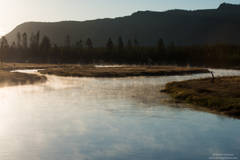 Madison river, yellowstone, national park, Wyoming