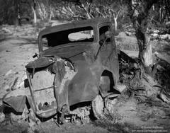abandoned, truck, eastern, sierra