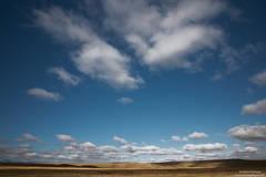 Wyoming Fields