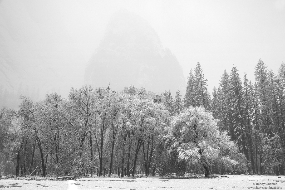 yosemite, valley, photo