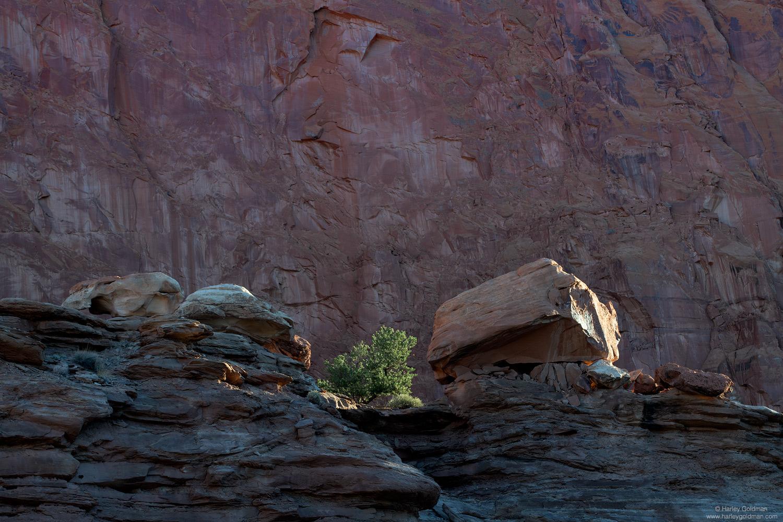 Utah, boulders, ledge, sunrise, morning, sandstone