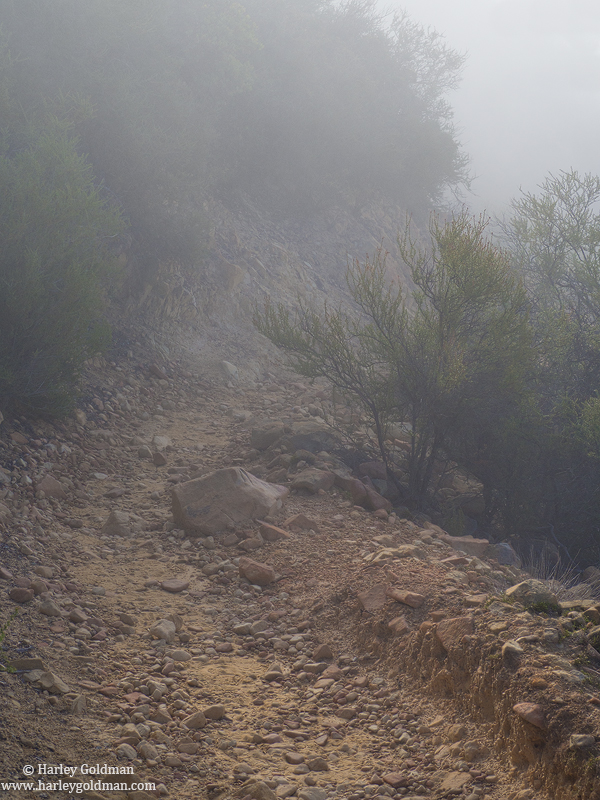 foggy, trail, santa barbara, mountains, ca, photo