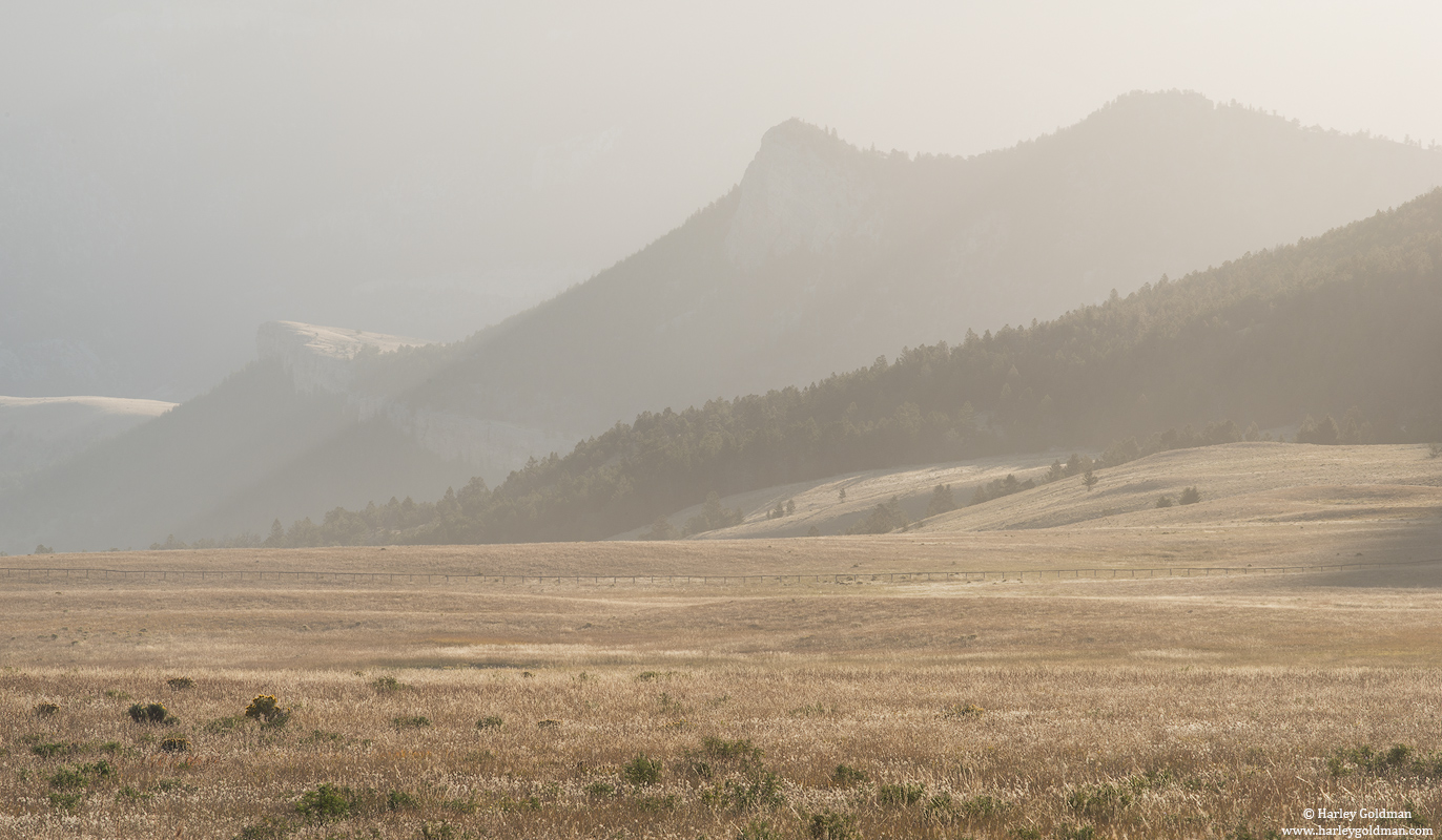 hazy, morning, ranch, photo