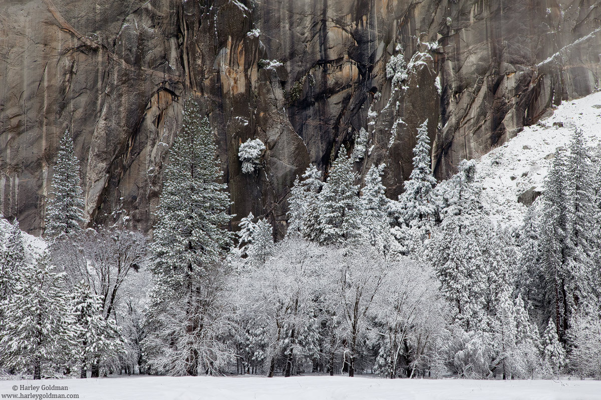 leidig, meadow, yosemite, valley, snow, national park, photo