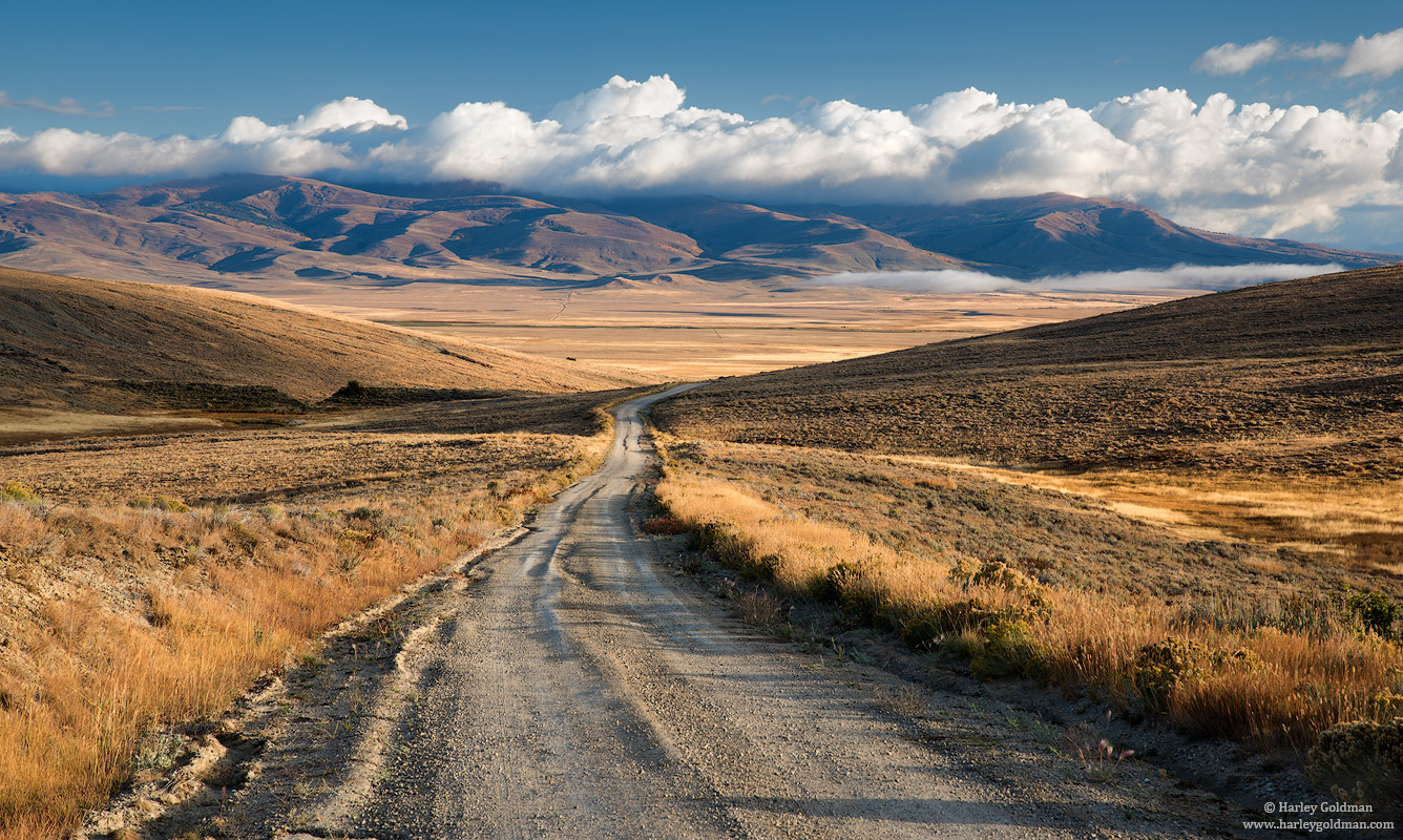 Montana, road, photo