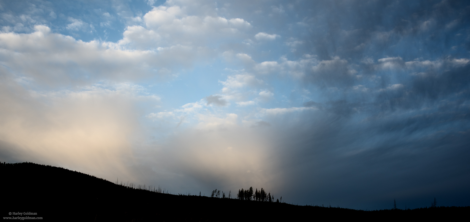 Wyoming, tree, ridge, yellowstone, , photo