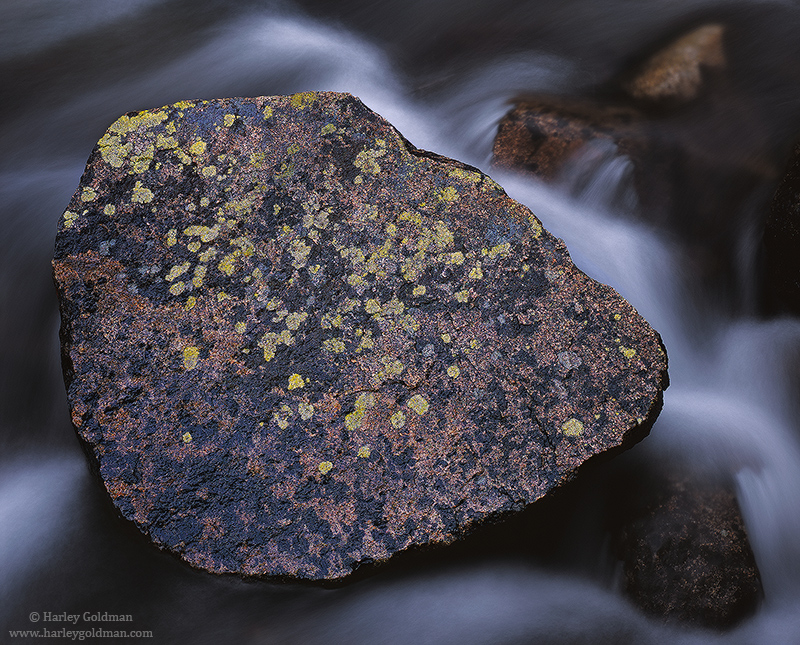 rock, creek, sierra, nevada, lichen, photo
