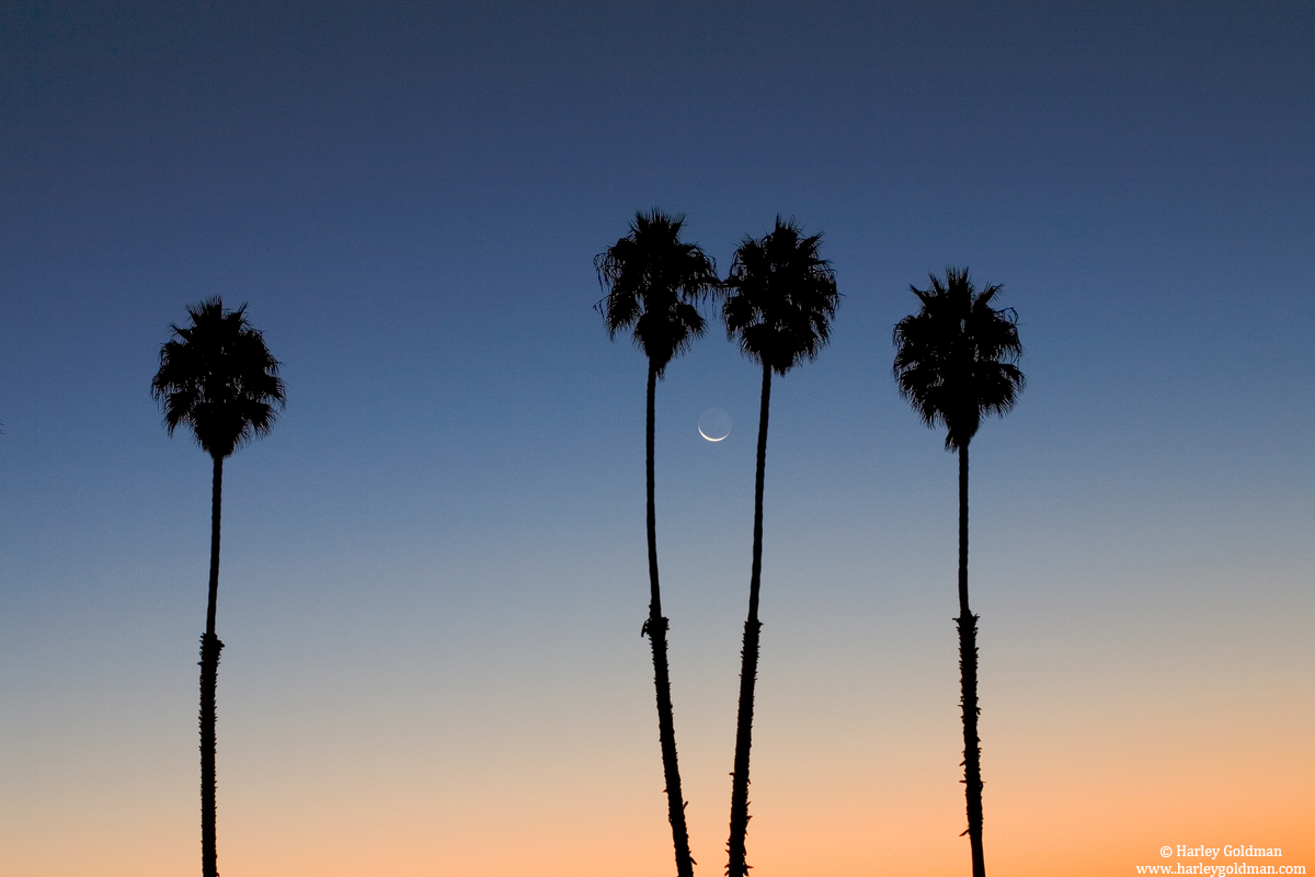 santa, barbara, moon, photo