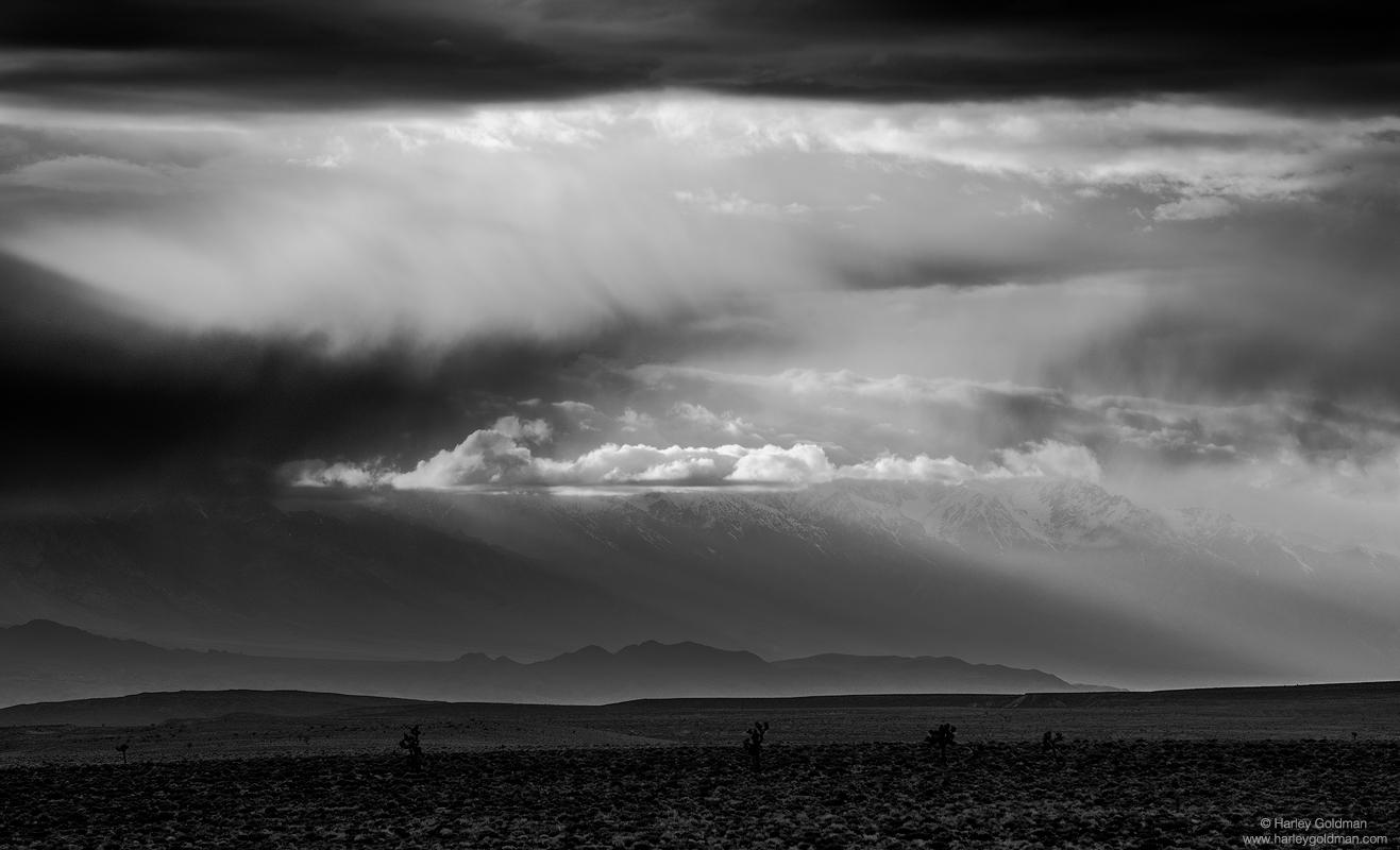 death valley, light, seeking, desert, cloud, storm, sun, ray, joshua, tree, stormy