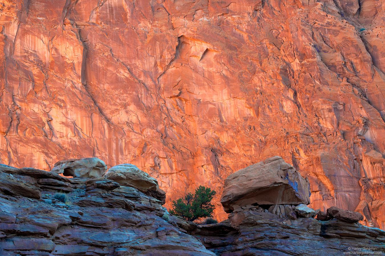 Utah, spiritual, rock, wall, canyon, pinon, pine, boulder, morning