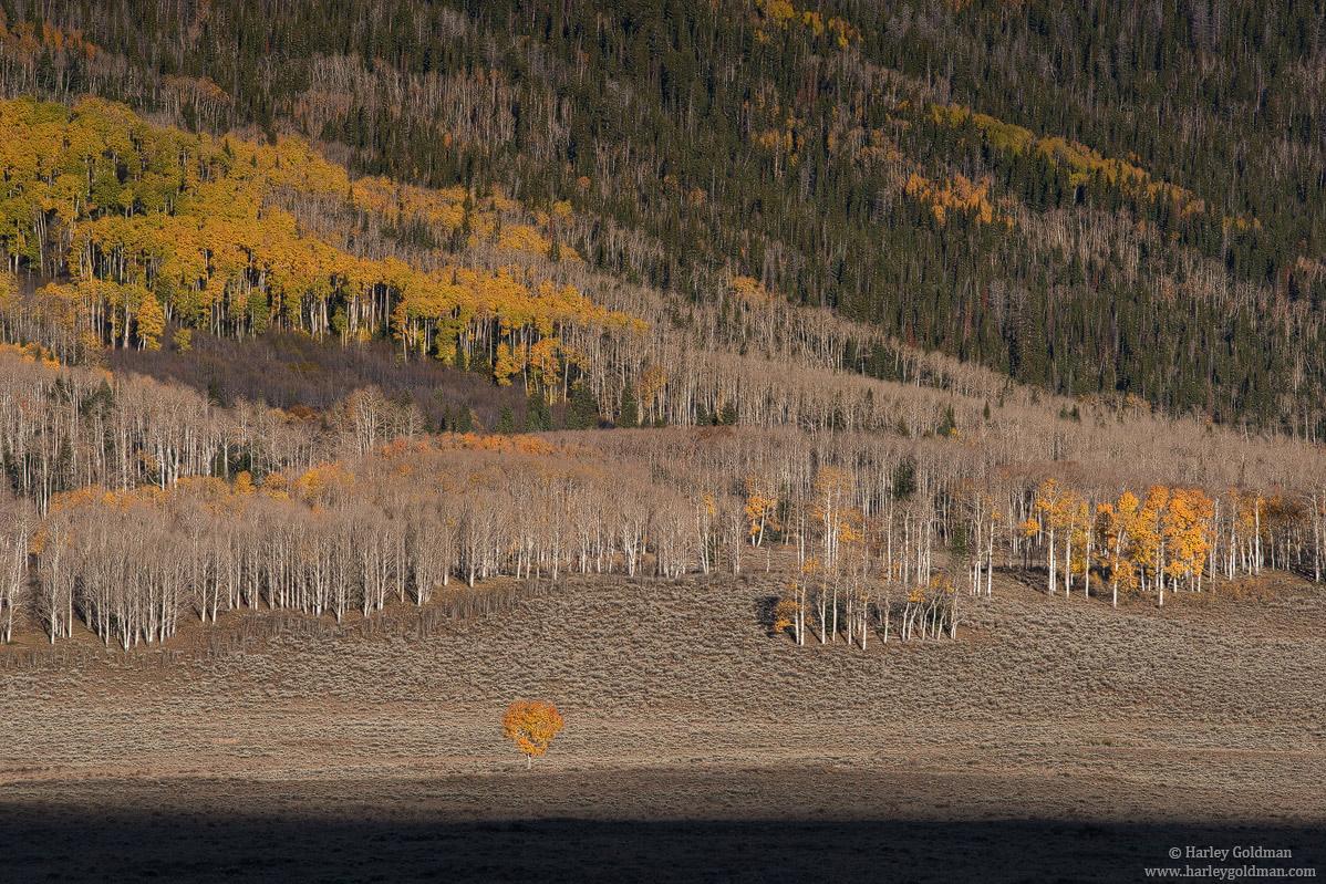 Utah, photo