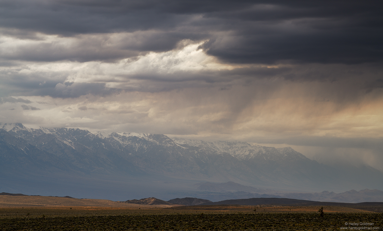 cloud, death valley, desert, storm, sierra, nevada, mountain, hill, joshua, tree