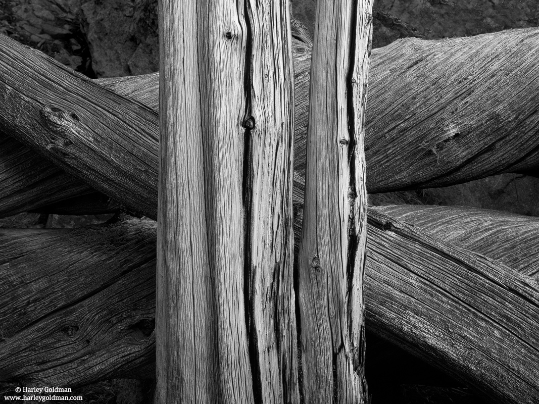 wood, grain, lamark, lake, sierra, nevada, photo